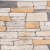 Ledgestone | Southwest - panel-48-x-24 - 16936 - 16980 - box-of-5